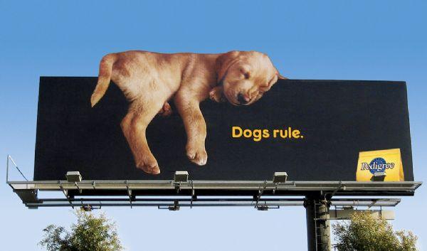 Outdoor Media Advertising, Highway Billboard Ad, HIghway Billboard Advertising Boston MA
